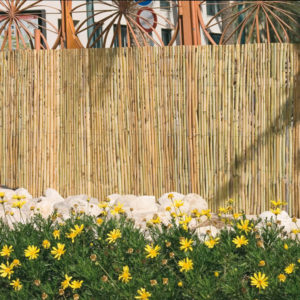 clôtures naturelles en roseau