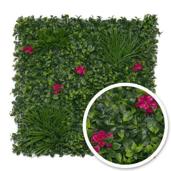 mur végétal amazone