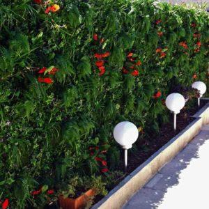 murs végétaux style tropical