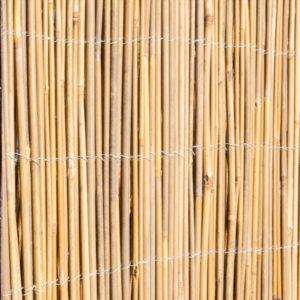 canisse naturelle bambou