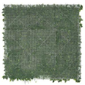 murs végétaux pour occultation et décoration