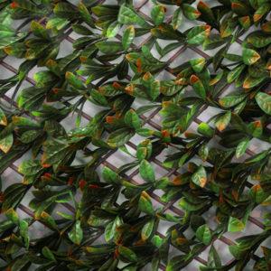treillis extensible imitation feuilles de photinia